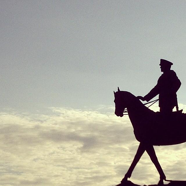 #HORSE RIDING