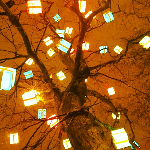 #CHRISTMAS #TREE #GLOW #AMBIENT #NIGHTLIFE
