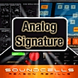 AnalogSignature110